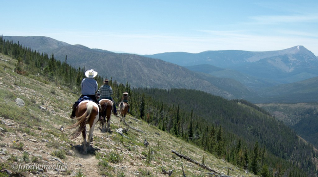 saddle up you re ready for your montana horseback pack trip k lazy 3 summer adventures